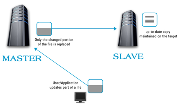 Backup Process